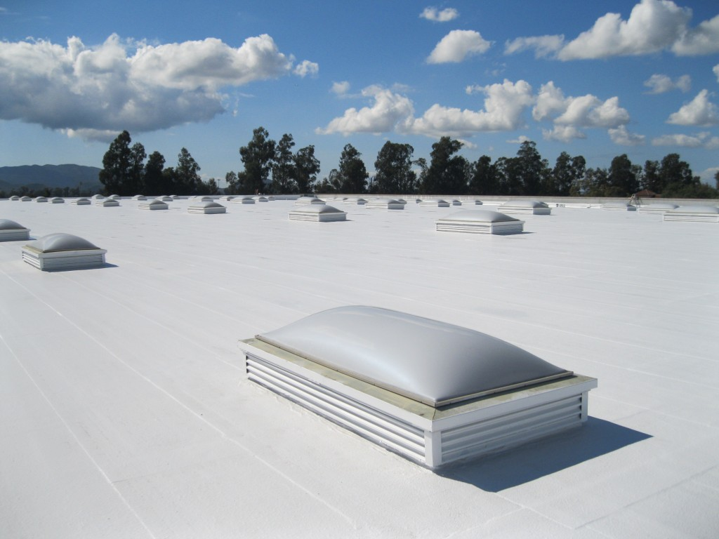 TPO Roofing With Nice white Coating